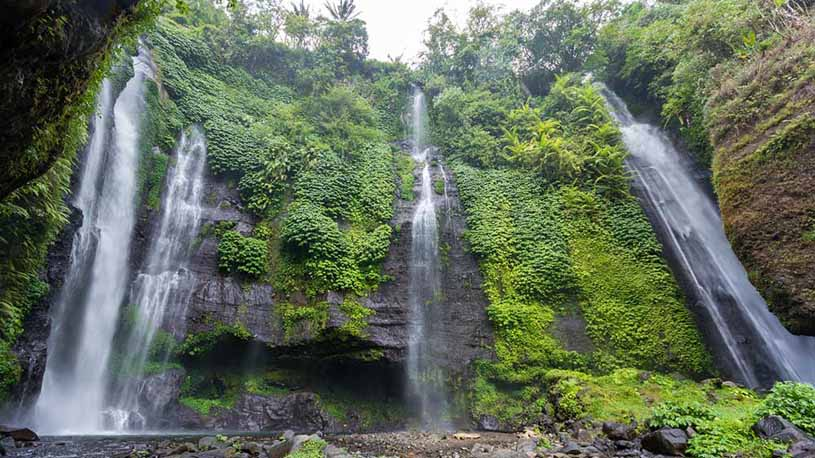Bali Jungle Trekking