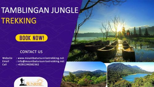 Tamblingan Jungle Trekking